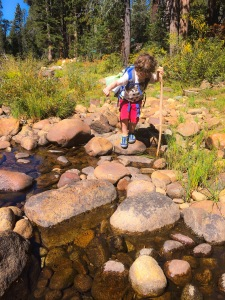 learning how to navigate across the creek with a hiking stick