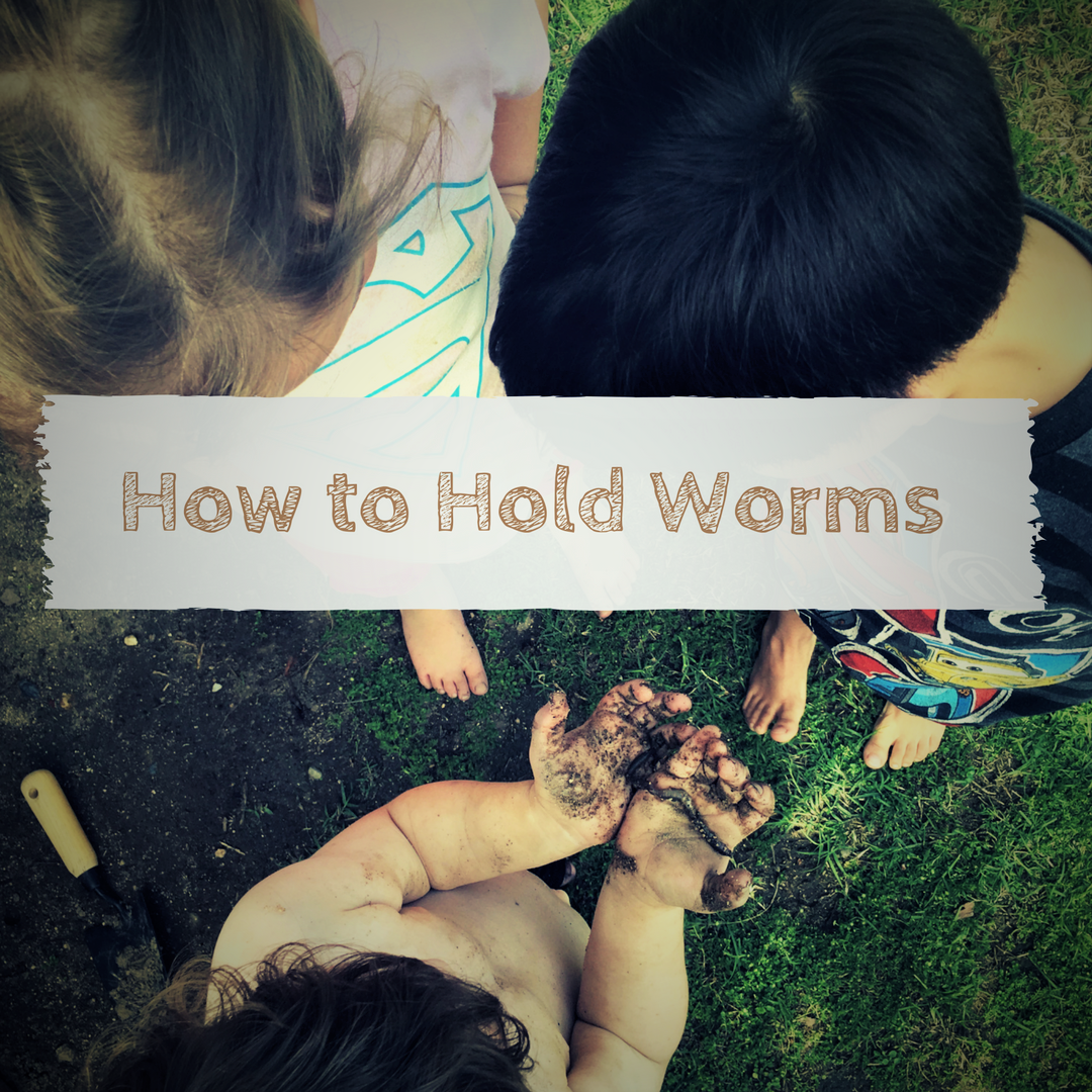 How To Hold Worms, And Other Slimy Things, In Three Easy Steps €�  Frogssnailsgeckotails
