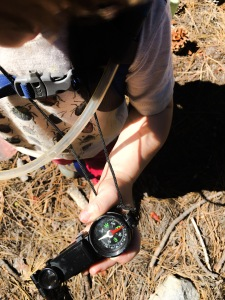 Compass training-life skills