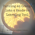 Turning an Orange Into a Hands on Learning Tool