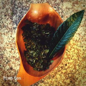Biwa tea from loquat leaves
