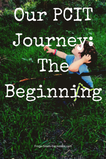 Our PTIC Journey The Beginning