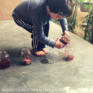 Making potions from flower petal watercolors