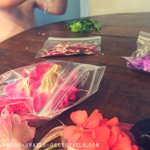 Separating petals by color