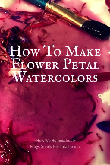How To Make Flower Petal Watercolors Homeschool science