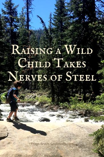 raising a wild child takes nerves of steel
